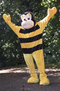Bumblebee Sport Gallery Pic 07