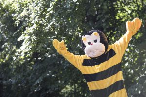Bumblebee Sport Gallery Pic 06