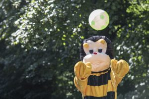 Bumblebee Sport Gallery Pic 03
